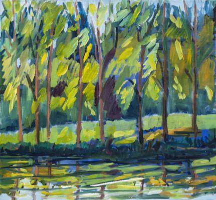 Trees Reflected (Manor Farm)